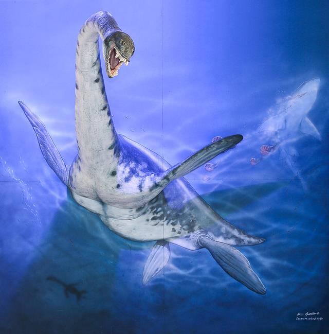 plesiosaurio-antartida