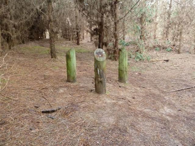 Hoy en día, tres tocones marcan el lugar del supuesto aterrizaje del objeto alienígena.