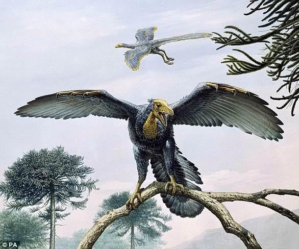 Interpretación artística de un Archaeopteryx.