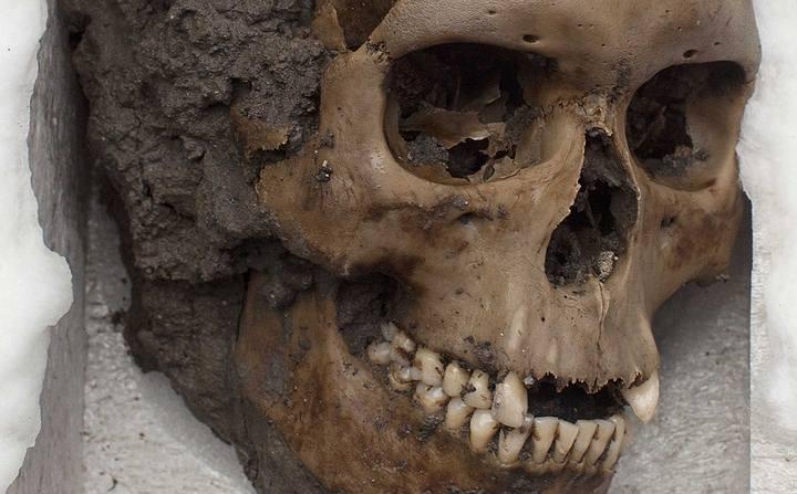 Un cráneo encontrado en el Templo Mayor, en ciudad de México. Foto: AP.