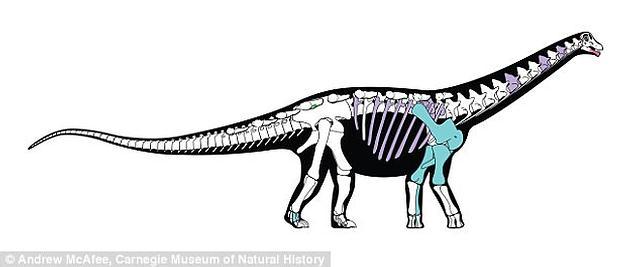 dinosaurio-africa3