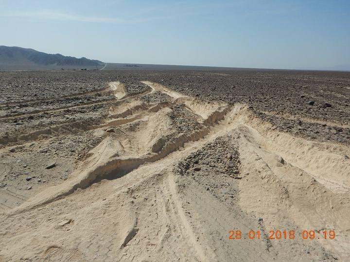 Detalle de las huellas. Foto: Ministerio de Cultura del Perú.