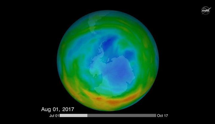 ozono-heals1