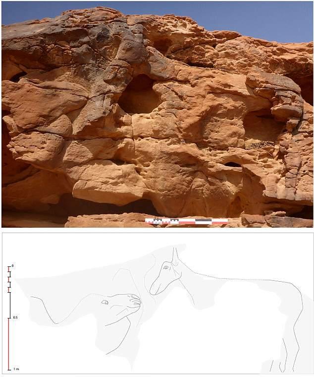 Una de las escenas más originales ilustra el encuentro entre un camello y un burro.
