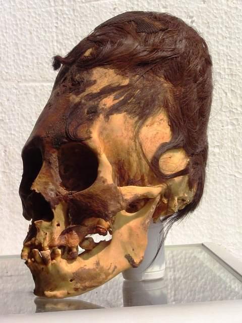 El análisis de este cráneo con cabello colorado genético, arrojó que tiene un haplogrupo mitocondrial U2e, lo que ubica su lugar de origen en el Cáucaso... Muy lejos de Paracas.