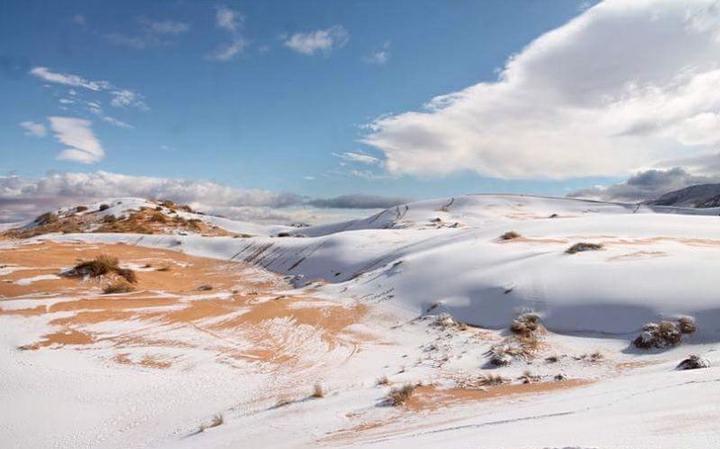 sahara-nieve2