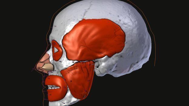 El rostro de San Valentín fue sometido a reconstrucción facial en 3D.
