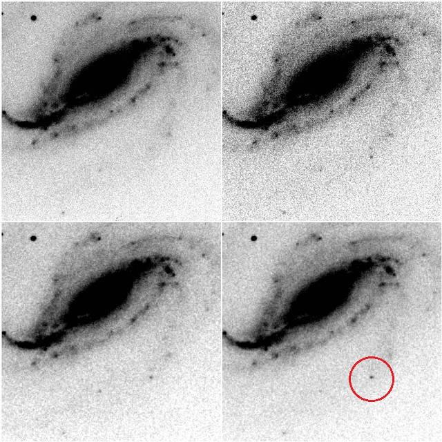 Secuencia de imágenes del descubrimiento. La supernova se aprecia como un punto que aparece al sur de la galaxia.