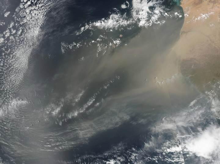 Algunos virus montan en partículas que circulan durante vastas tormentas de polvo, como aquellas que emergen del desierto del Sahara, para cruzar el océano Atlántico. Foto: NASA Earth Observatory.