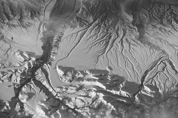Fotografía con un gorila insertado digitalmente en el paisaje, mostrada a los participantes del experimento.
