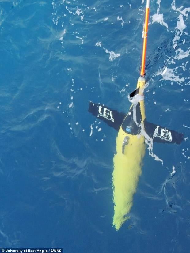 Uno de los robots submarinos utilizados.
