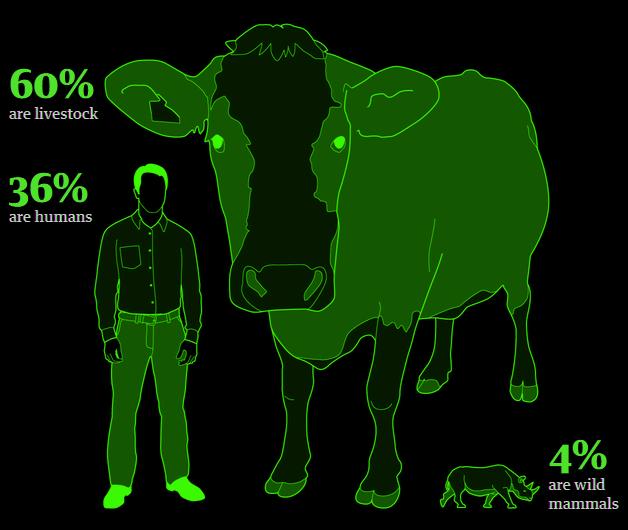 De todos los mamíferos sobre la Tierra, el 96 % son ganado y humanos, solo el 4 % son animales salvajes.