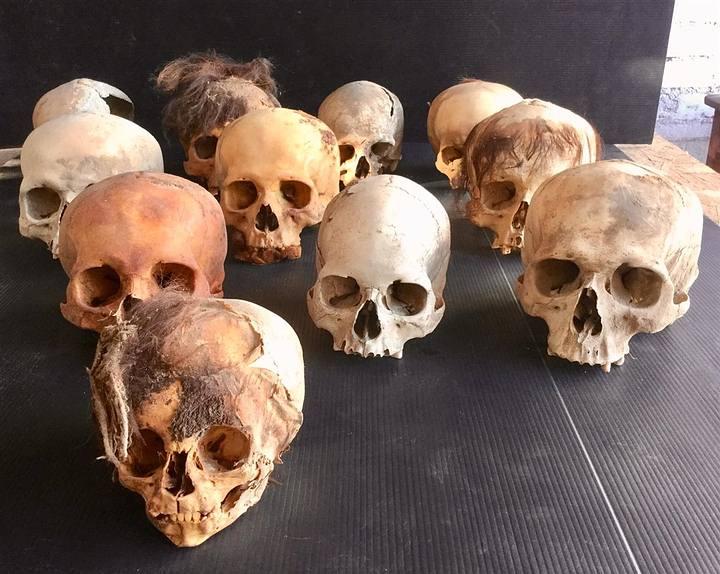Cráneos hallados en el sitio arqueológico de Pachacámac.